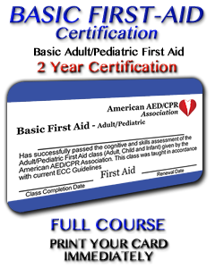 Basic First Aid Course - Adult/Pediatric